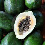 Uma fruta bem madura próxima a outras verdes faz com que essas amadureçam mais rápido?