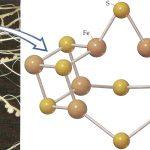 A fixação de nitrogênio e a nitrogenase