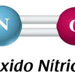 Importância do óxido nítrico (NO)